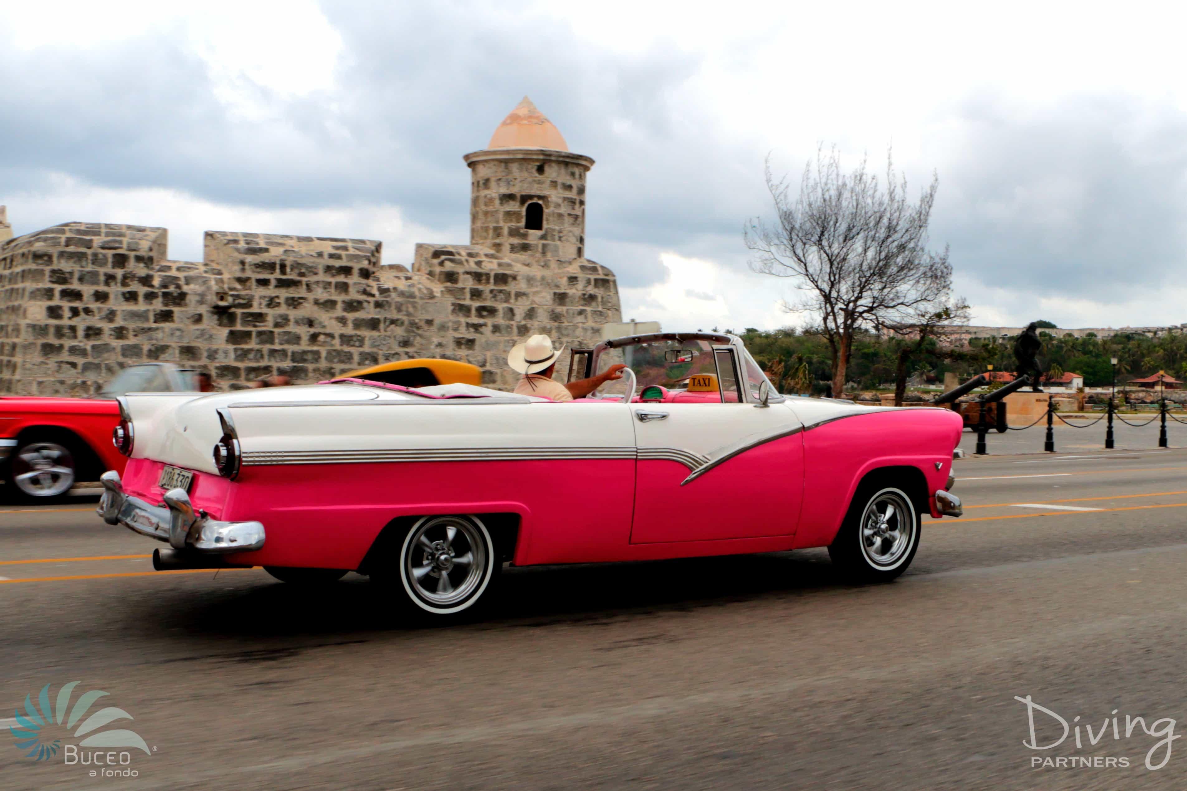 Diving Partners Cuba - La HabanaIMG_3473Azul