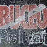 Buceo Pelicar